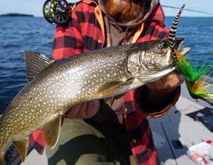 Lake Trout Fishing